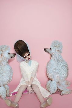 Boufant and poodles MATTHEW GALLAGHER - MILA VICTORIA