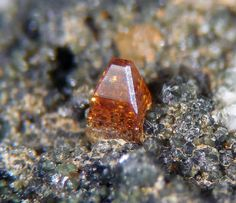 Anatase. Griesferner glacier, Vizze Valley (Pfitsch Valley), Bolzano Province (South Tyrol), Trentino-Alto Adige, Italie Taille=2 mm Collection et photo Antonio Gamboni