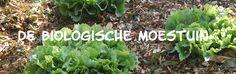 Website over de biologische moestuin...