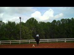 Training Level Walk.  Connecting from the leg to the stretching rein.  Susan and Beau - YouTube