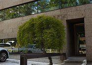 NAKAYAMA Architects Office, Projects - Amorim Isolamentos