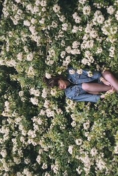 lost amongst flowers! What a nice place to be!