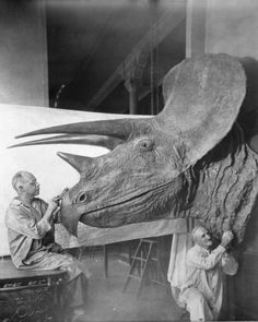 From the archives: Charles Lang and Otto Faulkenbach working on a Triceratops model, 1938  Explore the Museum's digital archives here.   AMNH Library/315711