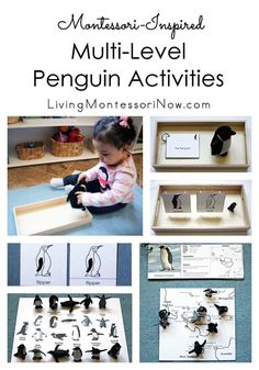 Hands-on penguin activities focusing on nomenclature and geography for toddlers through first graders . perfect for a Montessori-inspired penguin unit Continents Activities, Preschool Learning Activities, Preschool Lessons, Toddler Activities, Kids Learning, Preschool Kindergarten, Winter Activities, Preschool Ideas, Toddler Fun