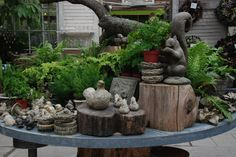 kathyrenwald: Photos from Philadelphia, from Longwood Gardens and Terrain at Styers-a lifestyle garden store.