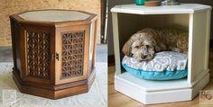 17 geweldige zelfmaakideetjes voor katten en honden