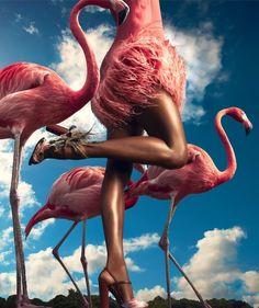 "Melodie Monrose by Dan Forbes for Harper's Bazaar US November ""Think Pink"" Shoot Tim Walker, Kate Spade, Fashion Art, Editorial Fashion, Nature Editorial, Shoes Editorial, Crazy Fashion, Fashion Cover, Fashion Images"