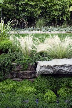 lush planting with a quiet palette in San Francisco garden of designer Antonio Martins