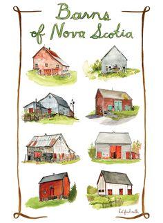 Barns of Nova Scotia print by Kat Frick Miller. Find them at the Lunenburg Farmers Market Thursday mornings in November and December.
