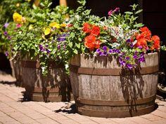 Wildly Whimsical Barrel Planter Ideas - Page 2 of 2 - Garden Lovers Club Diy Planters Outdoor, Garden Planters, Outdoor Gardens, Indoor Garden, Balcony Garden, Garden Trellis, Resin Planters, Indoor Plants, Wine Barrel Garden