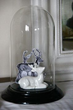 ❧ Cloches en verre ❧