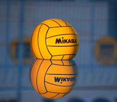 Water Polo Ball:  Used on the USA Water Polo website