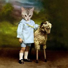 Cat with Lamb.