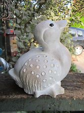 """isabel bloom duck 
