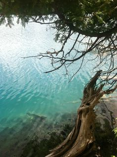 Green Lakes State Park's outstanding features are its two glacial lakes surrounded by upland forest. Both Round and Green Lakes are meromictic lakes, which means that there is no fall and spring mixing of surface and bottom waters.