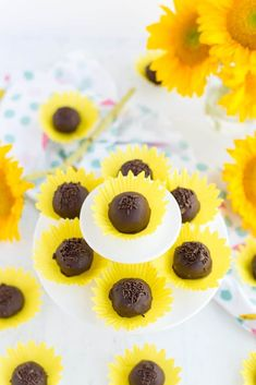 Bon Bons in Sunflower Cupcake Liners Sunflower Bon Bons: a delicious chocolatey treat served in a pretty sunflower shaped cupcake liner. Perfect for fall parties, bridal showers, and more! Sunflower Party Themes, Sunflower Birthday Parties, 1st Birthday Parties, Birthday Ideas, Sunflower Weddings, Themed Parties, Sunflower Cupcakes, Sunflower Cake Ideas, Graduation Cupcake Toppers