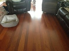 """Alternating widths of 3"""" & 5"""" Cherry Hardwood Flooring create a stunning, stylish, warm and relaxing sanctuary in this Bel Air, Maryland family room! Someone clearly loves it! Design, materials, & installation by George's Carpet One."""