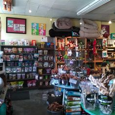 """137 Likes, 6 Comments - 9NEWS (@9newsdenver) on Instagram: """"One shop that draws pet lovers near and far is Mouthful's. 5280 Magazine named Mouthful's to its…"""""""