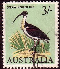 Australia 1964 SG 369 Straw Necked Ibis Fine Used Scott 373 Other Australian Stamps HERE