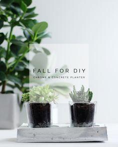 Fall For DIY Chrome and Concrete Planter