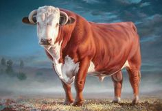 Hereford Bull Painting  by Hans Droog Farm Paintings, Paintings For Sale, Bull Painting, Hand Painting Art, Painting Styles, Bull Cow, Beef Cattle, Cow Art, Livestock