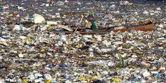 Encuentran una bacteria capaz de acabar con las botellas de plástico