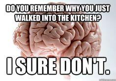 Damn Scumbag Brain!