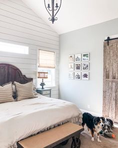 A house is not a home without a dog(s). Install cordless window treatments to keep your furry friends safe and sound. As practical as they are beautiful, our array of safe window coverings can't be beat! Window Coverings, Window Treatments, Budget Blinds, Custom Windows, Product Offering, Child Safety, Get One, Gallery Wall, Farmhouse Ideas