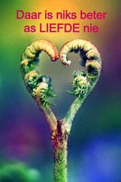 Happy Heart, Afrikaans, Love, Random, Amor, Casual
