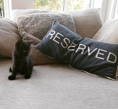 Apparently #Buttons🐾 has his own #reserved chair! 🤪 The #littlemenace has been sleeping all morning and now he's ready to #play ! Uh oh!…
