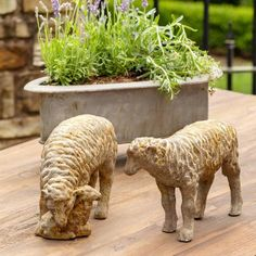 Country Sheep Family (Set-2) Hillside Farming, Park Hill Collection, Country Charm, Country French, French Style, Magnesium Oxide, Baby Sheep, Rustic Irons, Bird Statues