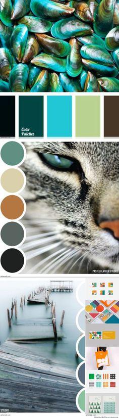 I would love to see a colour palette based on a Siamese cat's colours! Scheme Color, Colour Pallette, Color Palate, Colour Schemes, Color Combos, Color Patterns, Decoration Palette, Nature Color Palette, Color Stories
