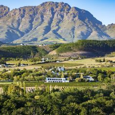 Breaktaking scenery, wine farms all around and a spa on the premises ─ Lanzerac Hotel & Spa offers everything you want and more!  #spa #hotel #Stellenbosch #boland #westerncape #SA #winelands