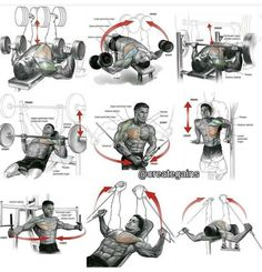 Chest Expert Workout Plan - Healthy Fitness Exercises Training - Yeah We Train ! Best Chest Workout, Chest Workouts, Fun Workouts, Chest Exercises, Planet Fitness Workout, Sport Fitness, Muscle Fitness, Weight Training Workouts, Training Plan
