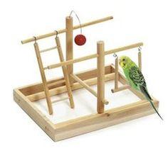 Výsledok vyhľadávania obrázkov pre dopyt hracky pre papagaja Budgie Toys, Bird Toys, Cockatiel, Budgies, Diy Bird Cage, Bird Stand, Cute Birds, Pet Toys, Ideas