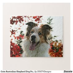 Shop Cute Australian Shepherd Dog Portrait Jigsaw Puzzle created by IYHTVDesigns. Border Collie Blue Eyes, Australian Shepherd Dogs, Make Your Own Puzzle, Custom Gift Boxes, Dog Portraits, Pet Gifts, High Quality Images, Jigsaw Puzzles, Moose Art