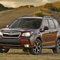 2014 Subaru Forester XT SixMonth Road Test Whats New For 2015 -  We're just starting our third month behind the wheel of our 2014 Subaru Forester 2.0XT, and change is in the air--not just the change from snow and slush to epic layers of