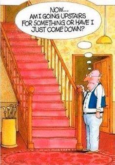 Dunno Funny Cartoon Pictures, Cartoon Jokes, Funny Cartoons, Funny Jokes, Hilarious, Humorous Pictures, Humorous Quotes, Funny Pics, Old Age Humor