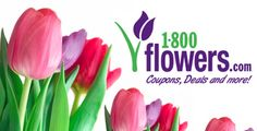 15% Off Flowers And Gifts at Store 1-800-Flowers.com  Description: Save 15% on Flowers and Gifts at 1-800-Flowers.com. Use #PromoCode at checkout.