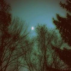 Fairy Tale Forest Art Print – Elegant Paper Cut – Night Sky – Trees Art – Stars Constellations Art P - Blattspinat Rezepte Fairy Tale Forest, Forest Art, Fairy Tales, Dark Green Aesthetic, Nature Aesthetic, Night Sky Stars, Night Skies, Twilight, John Hart