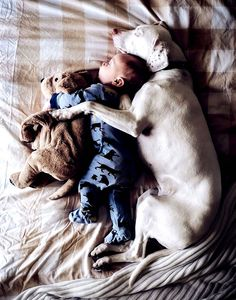 This baby and his dog have the habit of napping together.