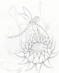 Lotus Dragonfly WIP - Lines - dragonfly tattoo