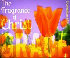 Grace, Christ's fragrance!