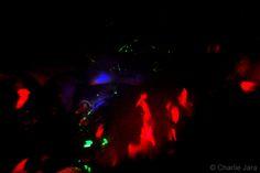 // Psicodelia mental © Charlie Jara /  #StreePhoto #StreePhoto_bw #PhotosStreet #StreetPhotography #FotografíaCallejera #Foto #Fotografía #Gente #People #Lima #Perú #instagranmerperu #Igersperu #followme #arteEnLaCalle #everydaylatinamerica #iphoneography #ojo #psicodelia
