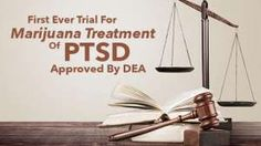 First Ever Trial For Marijuana Treatment Of PTSD Approved By DEA