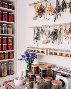 Want to create a home herbal apothecary for holistic health and wellness? We are breaking down the top 10 must have herbs a herbalist and integrative dietitian swears by for your home herbal apothecary. Herb Drying Racks, Drying Herbs, Slow Living, Sustainable Living, Sustainable Fabrics, Sustainable Energy, Home Interior, Container Gardening, Home Kitchens