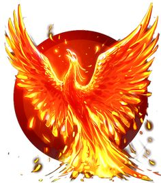 The phoenix mythology spans at least 9 possibly 10 different cultures. Egyptian, Greek, Roman, Arabic, Indian, Chinese, Japanese, Native America, Russian and possibly the Phoenician/Canaanite cultures all have their respective names and origins for the phoenix. One thing that all 9-10 mythologies do have in common is that when the phoenix is at the end of it's life cycle, it builds a nest, settles into the nest and bursts into flame, being reborn from the ashes.