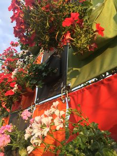 New ideas for the summertime are always available at Blooming Walls! Garden Leave, Green Bag, Container Plants, Hanging Plants, Working Area, North America, Summertime, Pergola, Planters