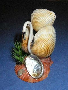 1000 images about sea shell animals on pinterest sea for Animals made out of seashells