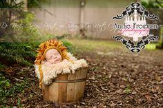 Newborn baby boy in antique brown bucket with lion hat.  Outdoor newborn session. www.TheAthensNewbornPhotographer.com